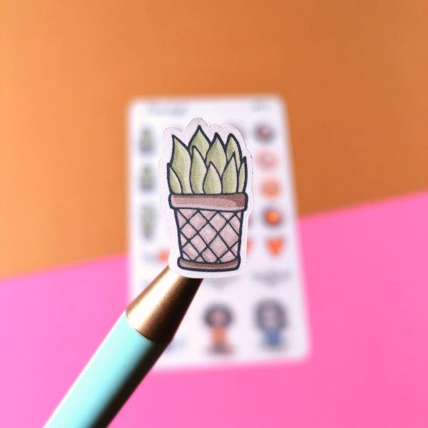 stickers cactus pormenor